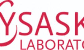 lysaskin-logo-300x93